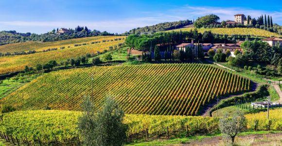 Brunello di Montalcino Wine Tour from San Gimignano