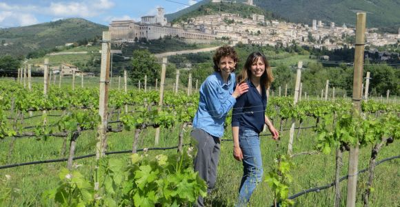Assisi Wine Tasting Picnic