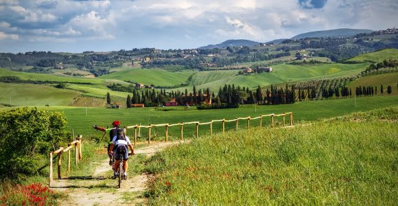 From San Gimignano: Chianti by E-Bike with Wine Tasting