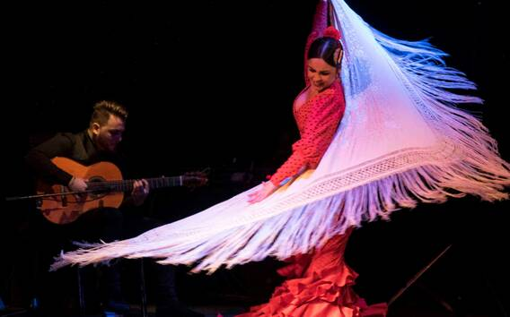 Barcelona: Flamenco Show at City Hall Theater