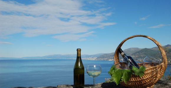 Camogli: Ligurian Wine Tasting Experience