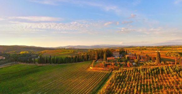 Arezzo: Val di Chiana Wine Tasting Experience