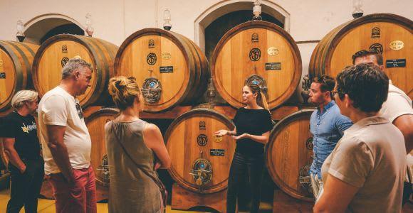 Half-Day Wine Tasting Tour in Valpolicella from Lake Garda