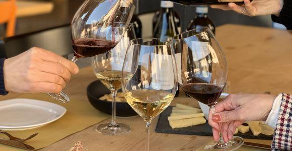 Valpolicella: tour guidato della cantina di 1,5 ore con degustazione di vini