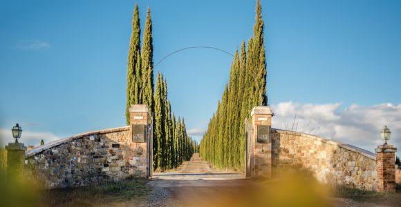 Montalcino: Wine Tasting with Snacks at Corte Pavone Winery