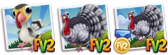 Painted Broad Breasted Turkey