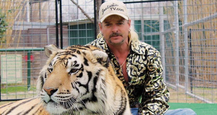 """Проект Netflix """"Король тигров"""" назван самым популярным сериалом на Rotten Tomatoes"""