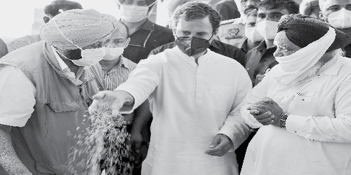 """We Won't Let Them Destroy Farmers"""": Rahul Gandhi Hits Out at Government"""