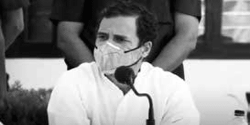 """New Farm Laws Will Weaken Nation's Foundation"": Rahul Gandhi"