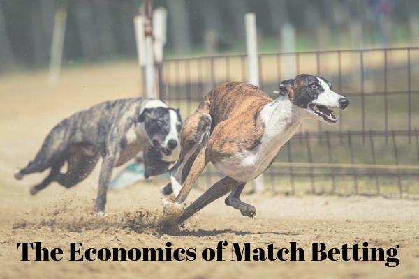 The Economics of Match Betting