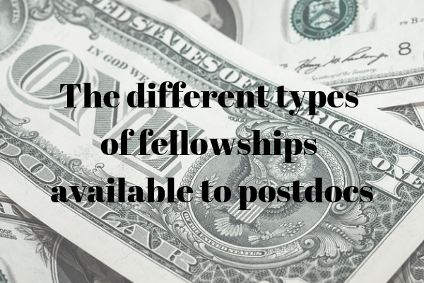 The different types of fellowships available for postdocs