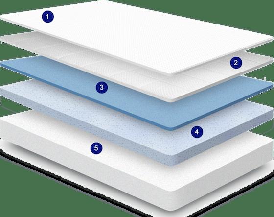 NECTAR layers