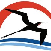 vsi logo
