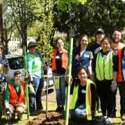 Planting Team