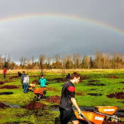 Volunteers plant trees in Whilamut Natural Area