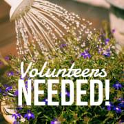 Watering Volunteers Needed