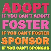 Adopt Foster Sponsor