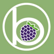 BlackBerry Radio Logo