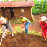Volunteer Work Uganda