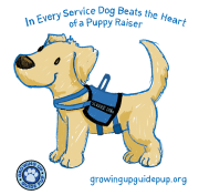 Growing Up Guide Pup