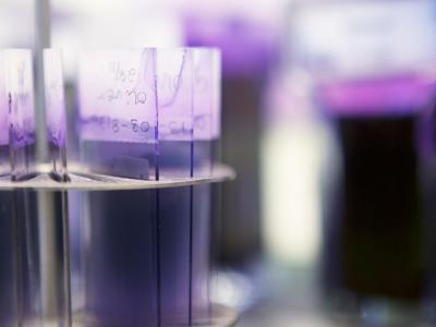 Antibiotikaresistenta bakterier