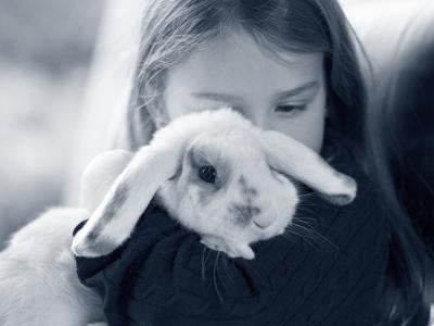 konijn in armen