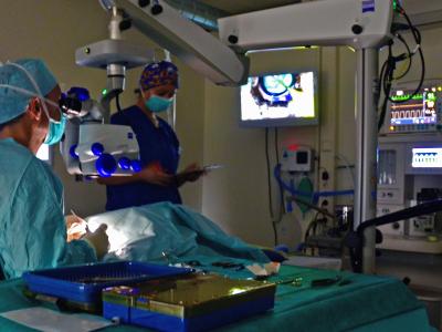Dierenarts-specialist voert staaroperatie uit