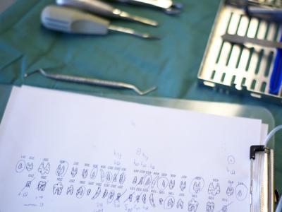 kat tandarts