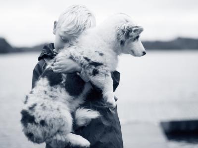 hond in armen