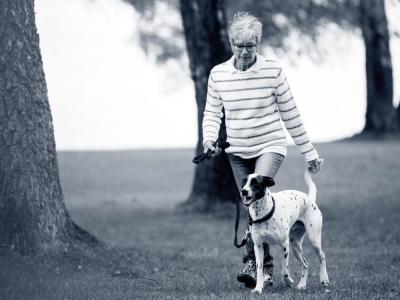 wandelen hond