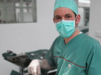 Dier operatie chirurg