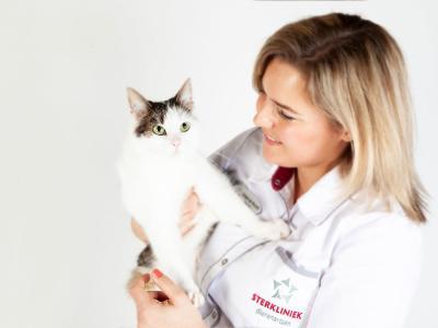 Kat en paraveterinair lachen