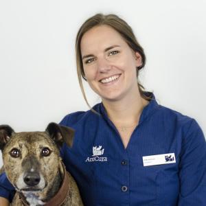dierenarts Nikki Hofman