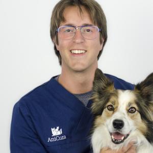 dierenarts Willem Wellens
