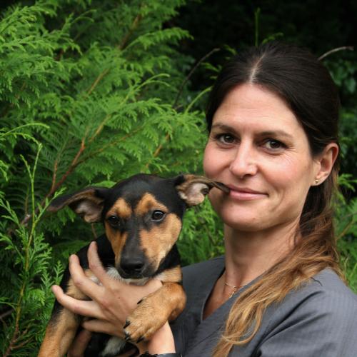 Dr. Stefanie Fischer