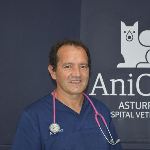 veterinario asturpet