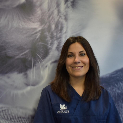 veterinaria uribe kosta