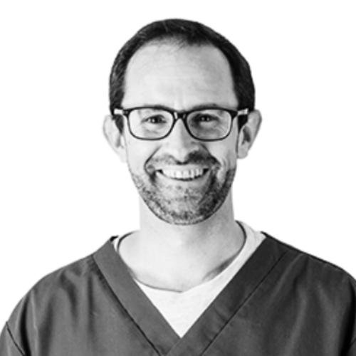 Dr. Vet. Sébastien Viaud