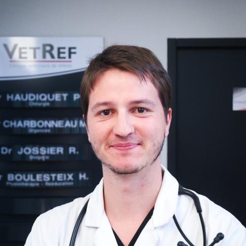 Dr. Vet. Thibault
