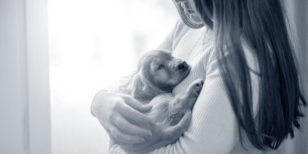 puppy vrouw
