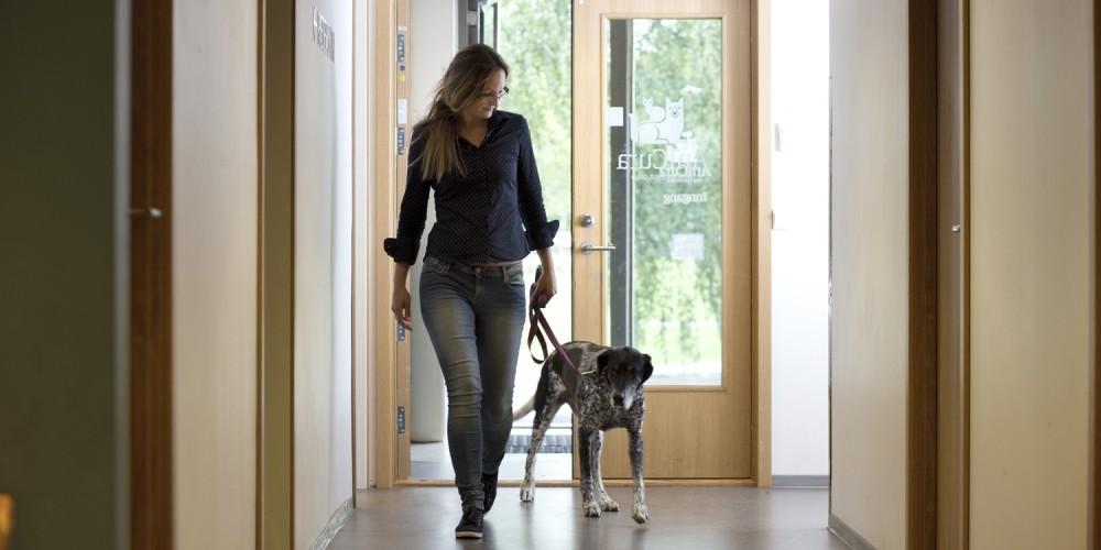 Tierarztbesuch mit Hund