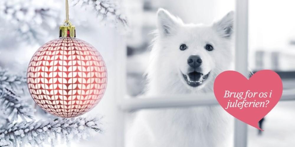 Åbningstider jul og nytår