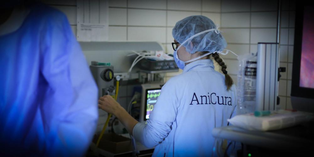 AniCura Århus Dyrehospital