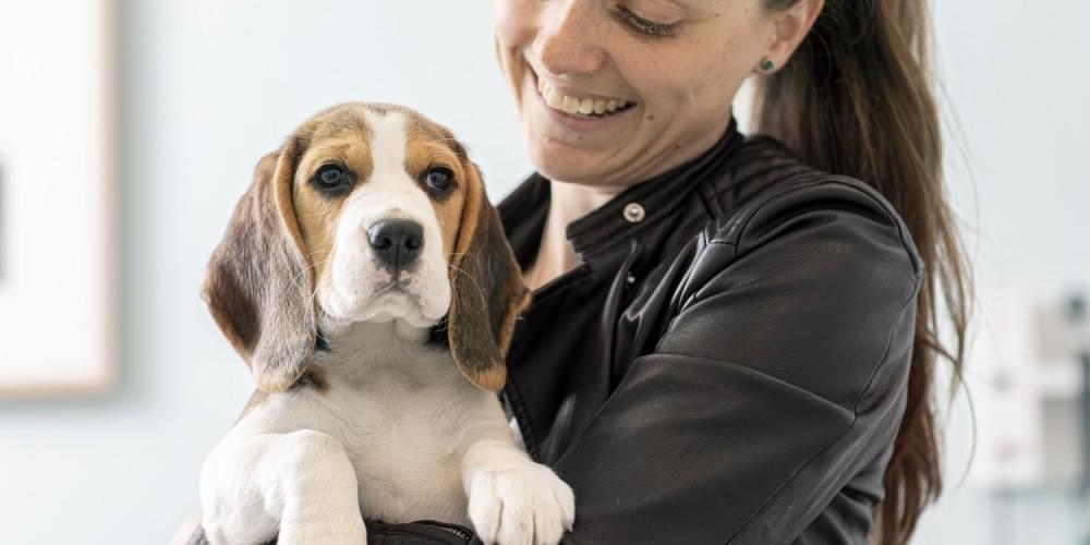 Checkliste til din hundesitter