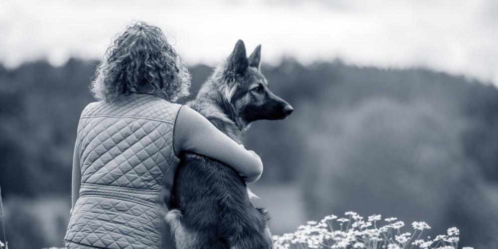 Kæledyr afhjælper ensomhed