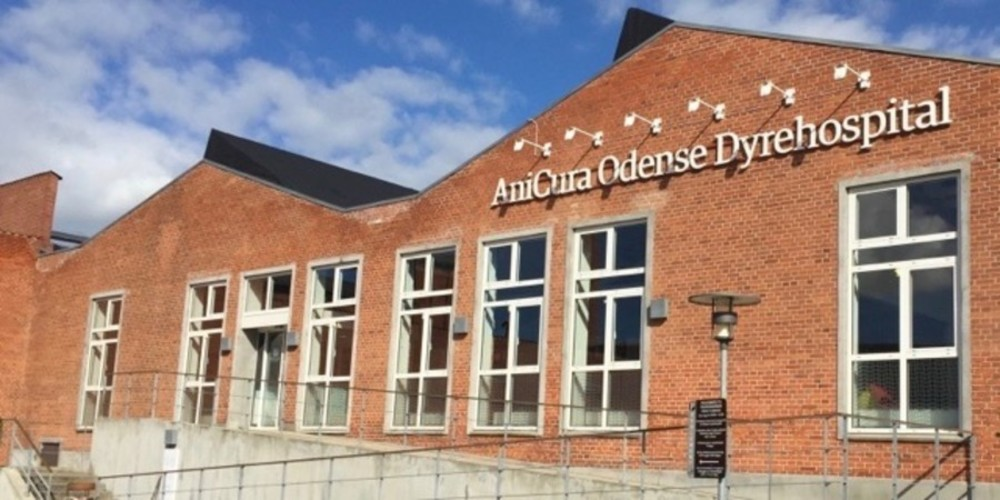AniCura Odense Dyrehospital - 25 års jubilæum