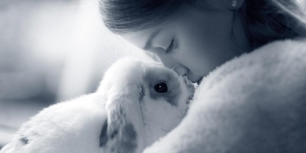 Vaccination af kaniner