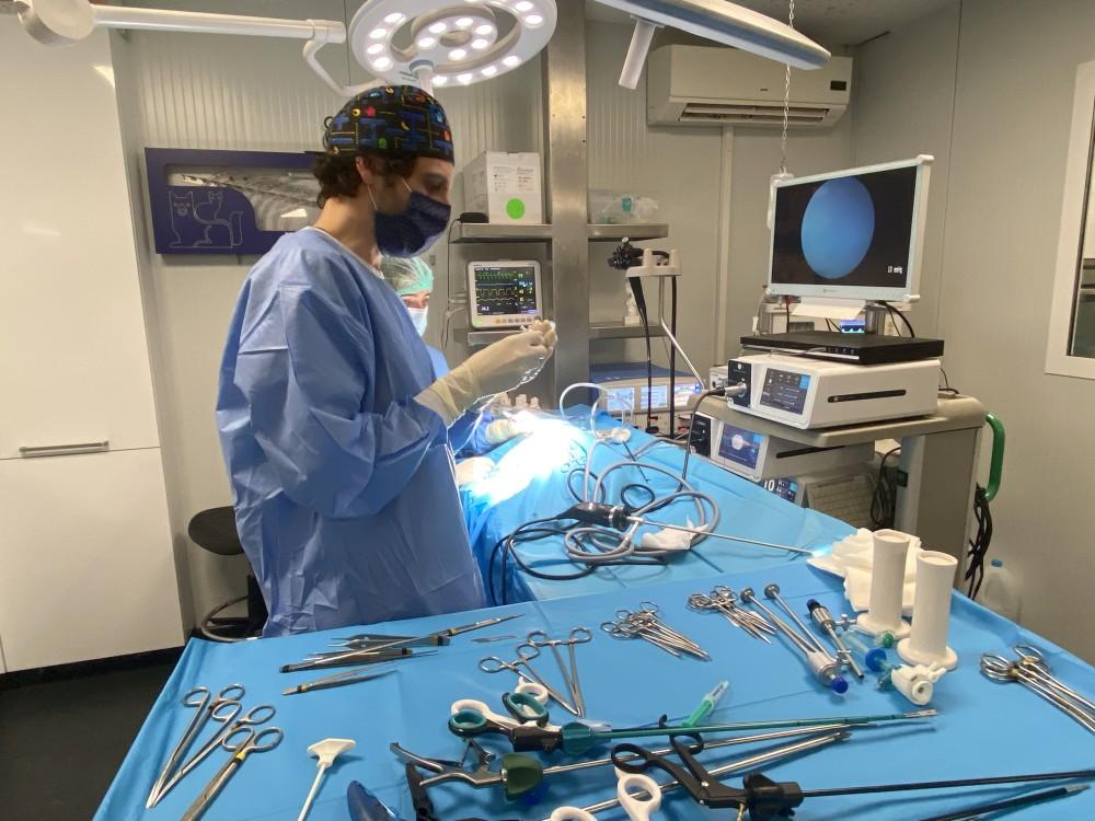 Cirugía de Mínima Invasión