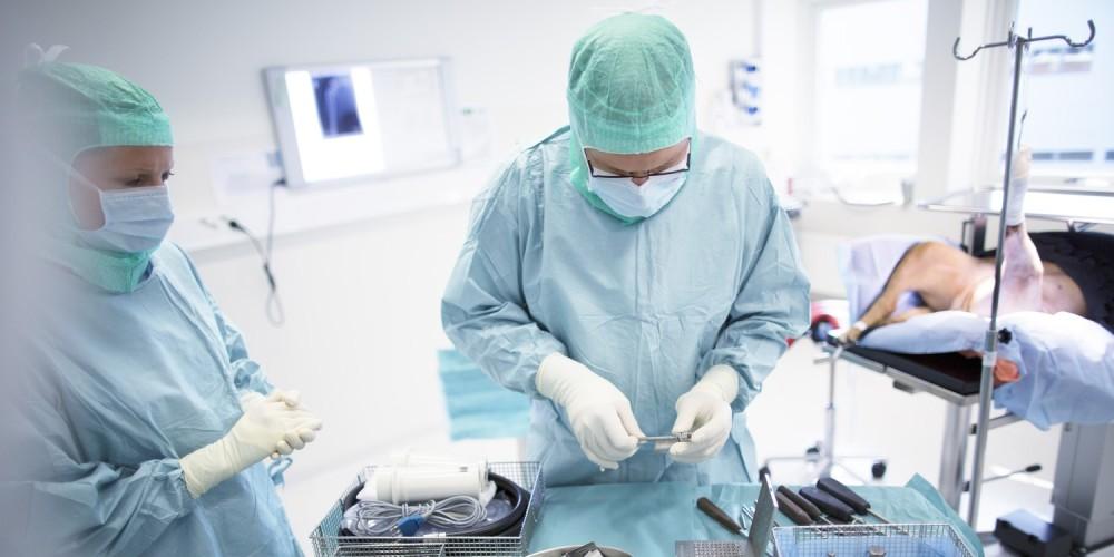 clinique vétérinaire de référés TRIOVet à Rennes