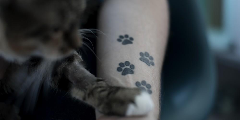 Bras portant des tatouages en forme de traces de chat